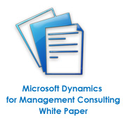 Microsoft Management Consulting