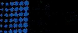 Data-Dynamics-Group_Queue-Associates_Partners